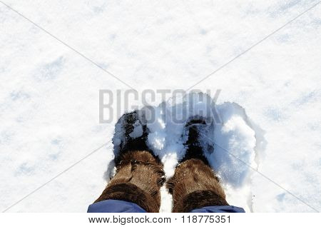Winter Boots With Natural Fur