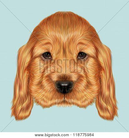 Red Puppy Portrait
