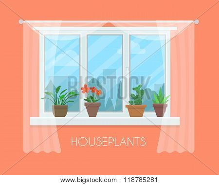 House plants in pots on window with a curtain