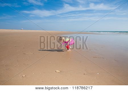 Baby Picking Sea Shells With Red Bucket
