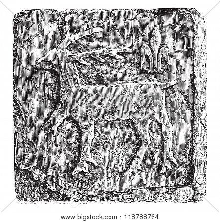 Terracotta paving tile unglazed, from the castle of Grainetiere, Vendee, thirteenth century