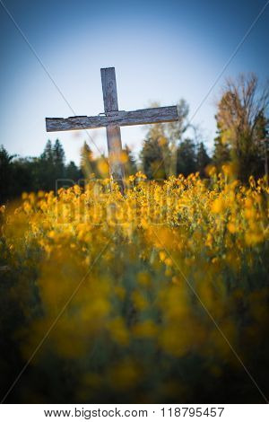 Large Wooden Cemetery Cross In Wildflowers