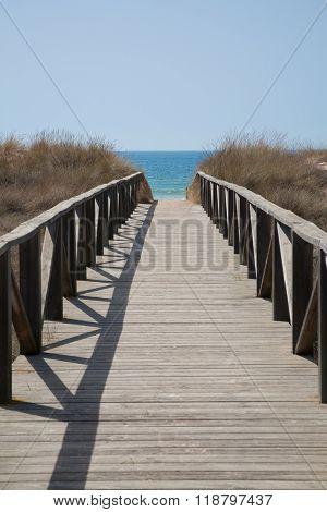 Wooden Way To Ocean Vertical