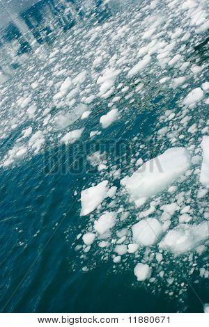 Stücke von Hubbard-Gletscher in Seward (Alaska)