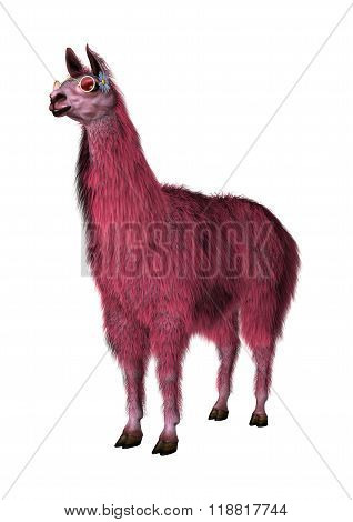 Pink Lama On White