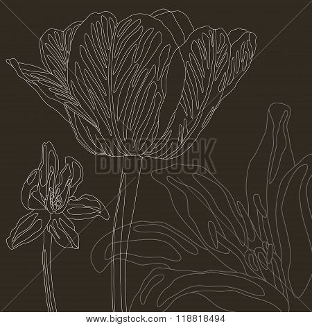 vector floral background with tulip and scilla