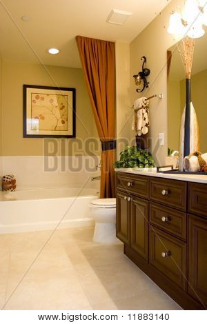 Modern tastefully decorated bathroom