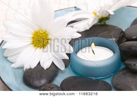 Massage stones and daisies