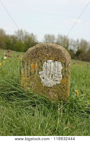 Old Meadow Boundary Marker
