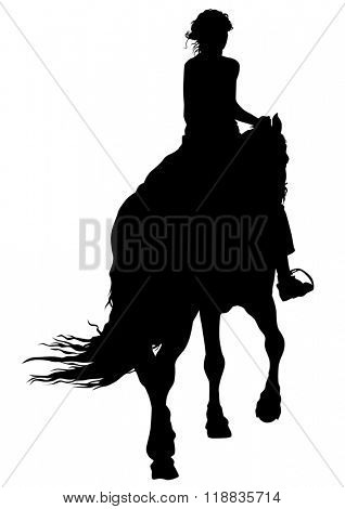 Horse with a riders women on a white background