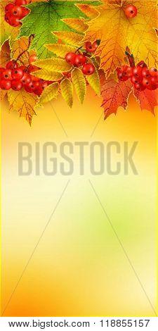 Autumn vertical banner