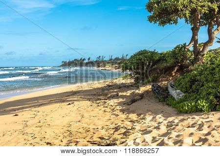 Sand beach in Kauai, Hawaii