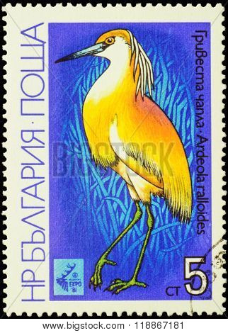 Yellow Heron On Postage Stamp