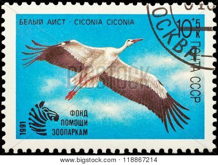 Flying White Stork On Postage Stamp