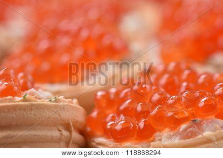 Caviar. Tartlets with red caviar. Gourmet food close up, appetizer