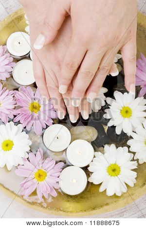 Woman's manicured hands with daisies