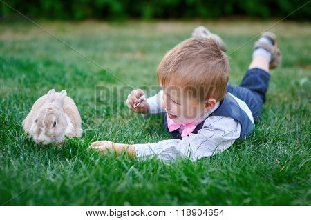 Little boy playing with a rabbit on the grass