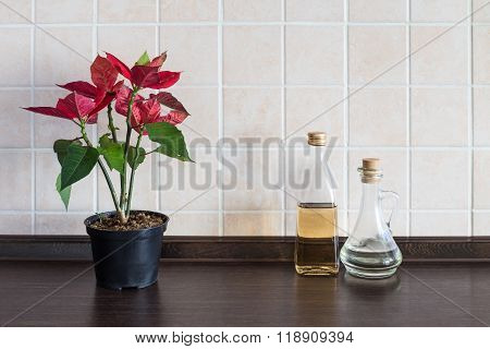 Kitchen Worktop Background. Plant With Two Bottle