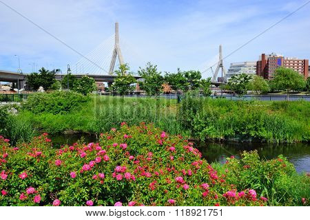 North Point park and Boston Leonard P. Zakim Bunker Hill Memorial Bridge with blue sky and flowe.