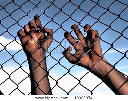 Dirty and discolored hands clinging to a steel wire fence