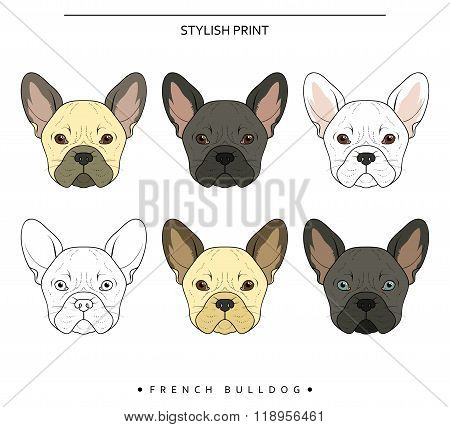 Set goals sketch french bulldog different color . Cute dog