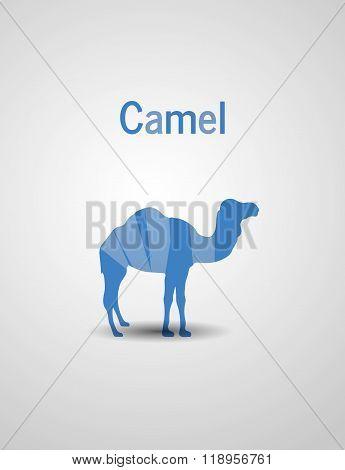 Colored Logo Camel