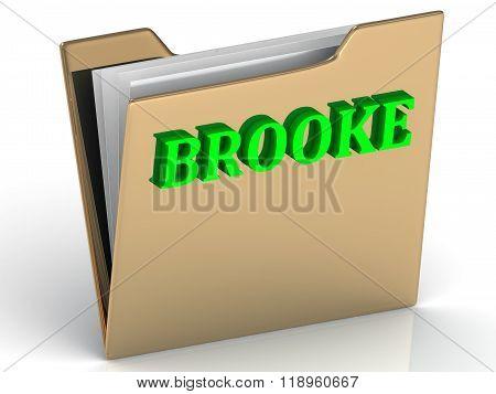 Brooke- Bright Green Letters On Gold Paperwork Folder
