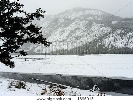 Yellowstone Winter Snow