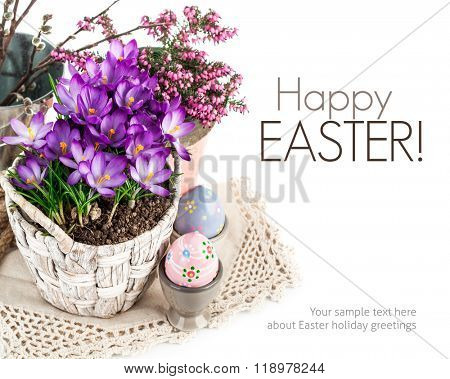 Easter eggs from spring flowers crocuses in wicker basket and bound doily. Isolated on white background