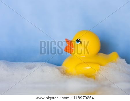 yellow rubber toy duck