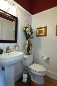 picture of wainscoting  - simple elegant bathroom with wainscot and dark painted upper walls - JPG