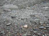 image of crips  - walking on the beach in the winter. listening to the water splash on the pebbles. crisp cold water and the cold air on your face and the crunch of pebbles under foot.