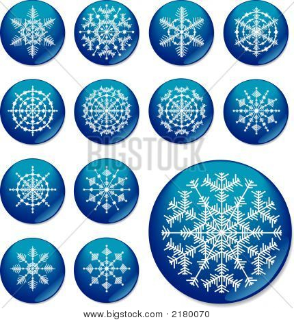 Thirteen Snowflakes. The Vector Image.