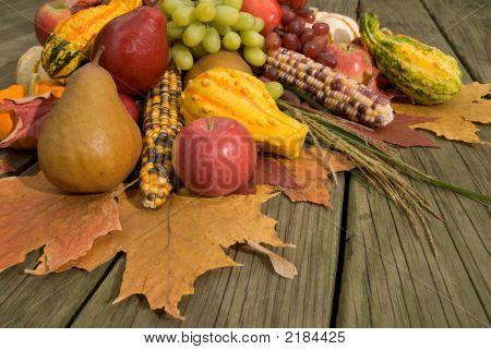 Cornucopia With Fall Harvest