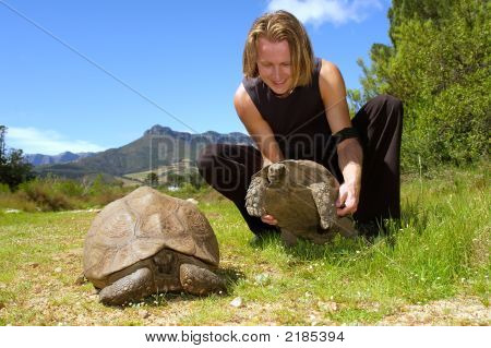 Man Plays With Two Giant Turtles