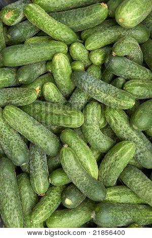 Heap Of Green Cucumbers