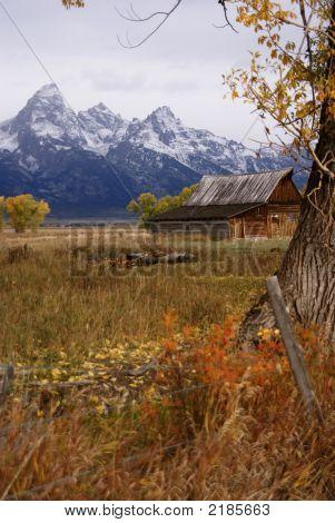 Autumn, Grand Tetons