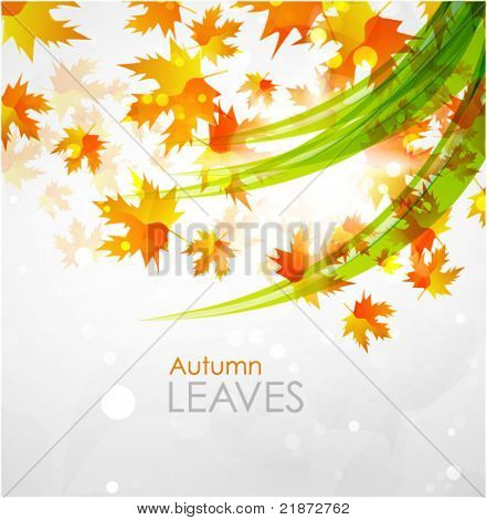 Autumn seasonal vector abstract background