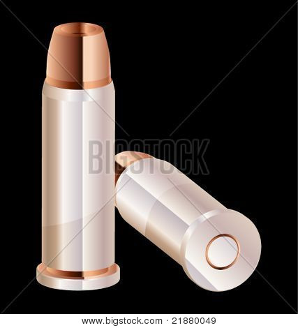 icon Vector two rounds of pistol caliber