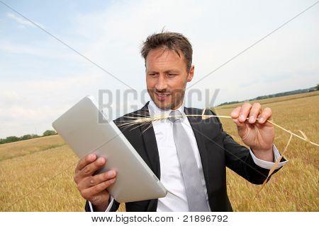 businessman working in wheat field