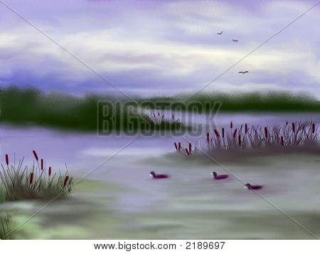 Marsh Land Scenery