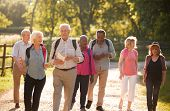 Group Of Senior Friends Hiking In Countryside poster