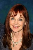 LOS ANGELES - JUL 16:  Pamela Sue Martin at the Hollywood Show at Burbank Marriott Convention Center