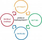 pic of human resource management  - People management business diagram whiteboard chart illustration - JPG