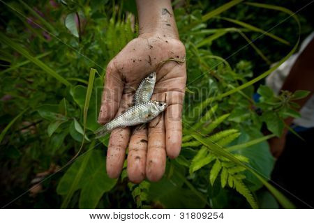BALI, INDONESIA - MARCH 31: Unidentified poor child catches small fish in a ditch near a rice field on March 31, 2012 on Bali. Daily caloric intake per capita in Indonesia is 2891 kcal per person.