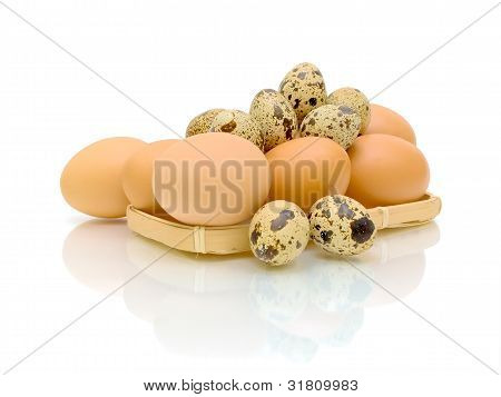 Quail And Chicken Eggs On White Background