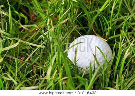 Photo of a golf ball lying in the rough grass