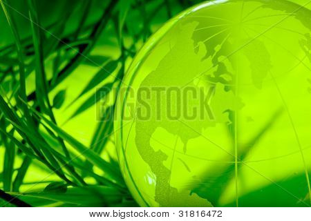 Environment concept, glass globe in the leaf
