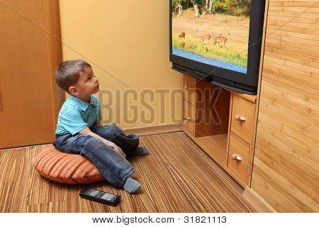 "Little boy watching cinema on TV. TV screen -  photo of the author ""Deers"""