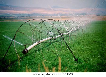 Landwirtschaftliche Sprinkler